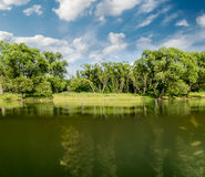 Piękna sceneria na jeziorze na pogodnym letnim dniu Obraz Royalty Free