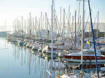 piękna schronienia jachtu klub Zdjęcie Royalty Free