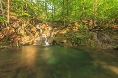 Piękna siklawa, kaskady i czysta rzeka w lesie, Fotografia Royalty Free