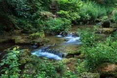 Piękna siklawa w lesie Zdjęcie Royalty Free