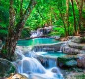 Piękna siklawa w tropikalnym lesie Zdjęcie Royalty Free