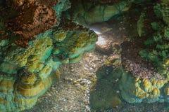 Piękna sopleniec formacja w wodzie z monetami Obrazy Royalty Free