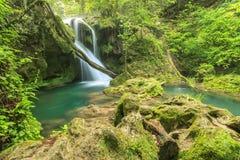 Piękna Vaioaga siklawa, Beusnita Naturalny park, Rumunia Zdjęcie Stock