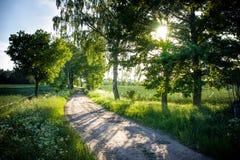 Piękna wiejska droga Obraz Royalty Free