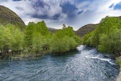 Piękna wiosny dolina, Gruzja, May 2017 Obrazy Royalty Free