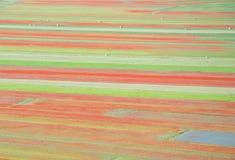 Piękna wsi scena, abstrakcjonistyczny kwiat Obraz Royalty Free