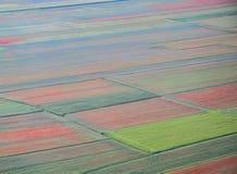 Piękna wsi scena, abstrakcjonistyczny kwiat Umbria, centrala Italy-8 Obraz Stock