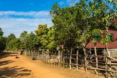 Pi?kna wsi wycieczka w tropikalnym wiejskim okr?gu, Siem Przeprowadza ?niwa, Kambod?a fotografia royalty free