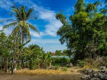 Pi?kna wsi wycieczka w tropikalnym wiejskim okr?gu, Siem Przeprowadza ?niwa, Kambod?a zdjęcie stock