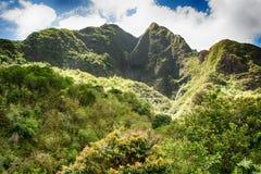 Piękna zielona góra i tropikalny las deszczowy Obrazy Stock