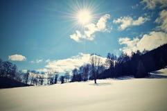 Piękna zima Fotografia Stock