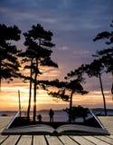Piękna zmierzch sylwetka drzewa i morze w tle i p Zdjęcie Stock