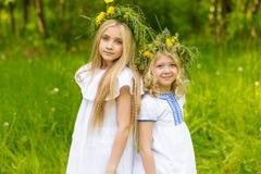 Piękne blondynek dziewczyny Obraz Royalty Free