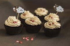 Piękne czekoladowe babeczki Zdjęcie Stock