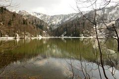 piękne jezioro Zdjęcia Stock