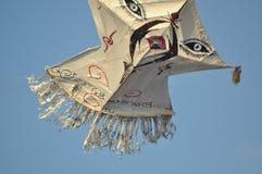 Piękne kanie na niebie Lankijczyka niebo zdjęcie royalty free
