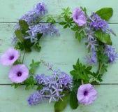 piękne kwiaty purpurowych Obrazy Stock