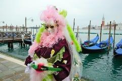 piękne maskowe tajemnicze menchie Fotografia Royalty Free