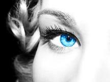 piękne niebieskie oczy Obrazy Royalty Free