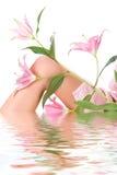 piękne nogi kobiety Obrazy Royalty Free