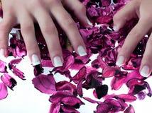 piękne paznokcie Zdjęcie Royalty Free