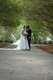 piękne wesele Obraz Stock