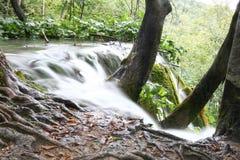 piękne wodospadu Obraz Stock