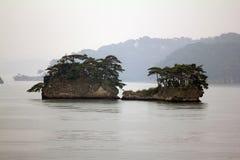 Piękne wysepki w Matsushima zakrywali z sosnami r na roc Zdjęcia Stock