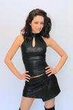 pięknego brunetki dziewczyny stroju seksowny target1147_0_ Zdjęcia Stock