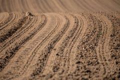 Pięknego lata krajobrazu wiejskie linie Obraz Royalty Free