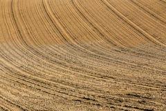 Pięknego lata krajobrazu wiejskie linie Obraz Stock