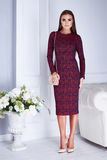 Pięknego seksownego kobieta ubraniowego katalogu mody czerwieni elegancka suknia Fotografia Royalty Free