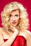 Pięknej blondynki seksowna dziewczyna Obraz Stock