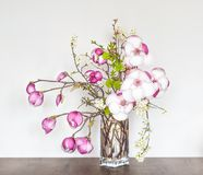 Pi?knej wiosny Kwiecisty sk?ad z R??ow? magnoli? obraz stock