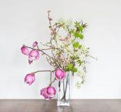 Pi?knej wiosny Kwiecisty sk?ad z R??ow? magnoli? obrazy stock