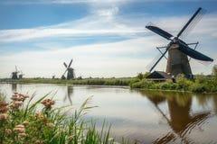 Piękni Holenderscy wiatraczki przy Kinderdijk Zdjęcie Royalty Free