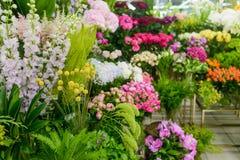 Piękni kolorowi kwiaty przy sklepem zdjęcia stock