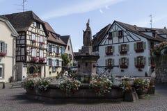 Piękni kolorowi kwiaty w Alsace, Francja Zdjęcia Royalty Free