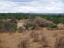 Piękni krajobrazy Afryka Obraz Stock
