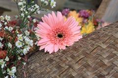 Piękni kwiaty na drewnianym tle Zdjęcie Stock