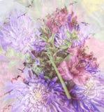 Piękni kwiaty w naturze Fotografia Royalty Free
