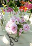 Piękni kwiaty wiele kolory Obrazy Royalty Free