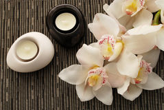 Piękni kwiaty z yin Yang candlestick Fotografia Stock