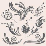 Piękni kwiecistego projekta elementy ilustracji