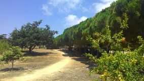 Piękni miejsca Cypr Obrazy Royalty Free