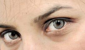 piękni oczy Fotografia Stock