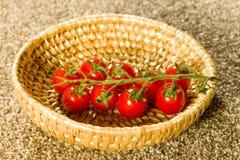 Piękni pomidory Obrazy Royalty Free