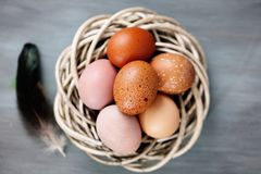 Piękni surowi jajka w koszu, odgórny widok Zdjęcia Royalty Free
