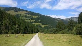 Piękni widoki Austria Zdjęcia Royalty Free