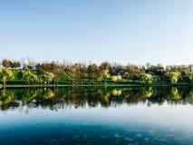 Piękni wiosen drzew odbicia W Wodnym jeziorze Tineretului park W Bucharest Zdjęcie Royalty Free